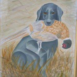 Archie i akvarell