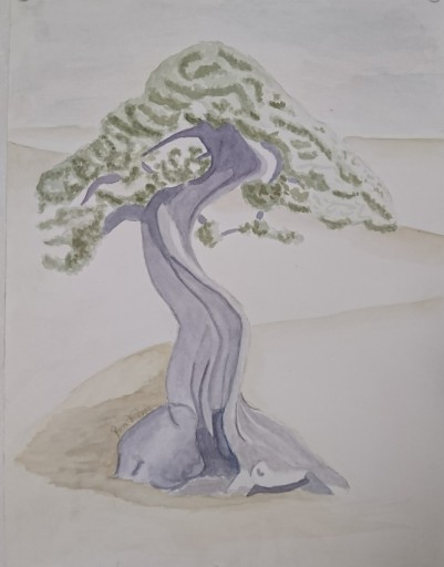 Livets träd/The tree of life Akvarell 30X40 cm not for sale